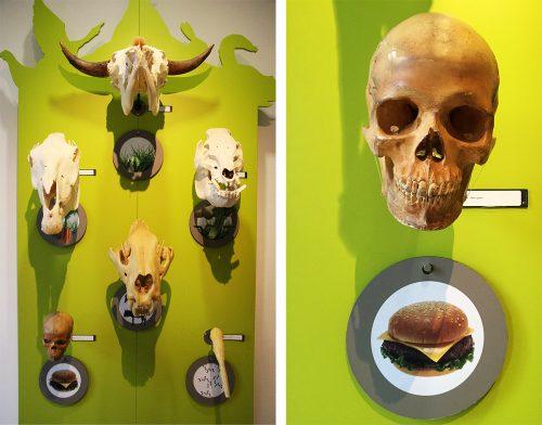 Jedzenie Homo Sapiens