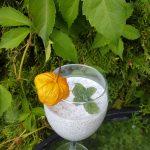Do czego wykorzystałam nasiona chia (szałwia hiszpańska) - 4 wyczesane w kosmos paleo desery