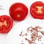 Nasiona pomidorów - jak zbierać?