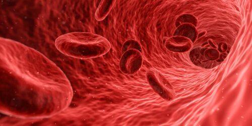 Cholesterol, naczynia krwionośne